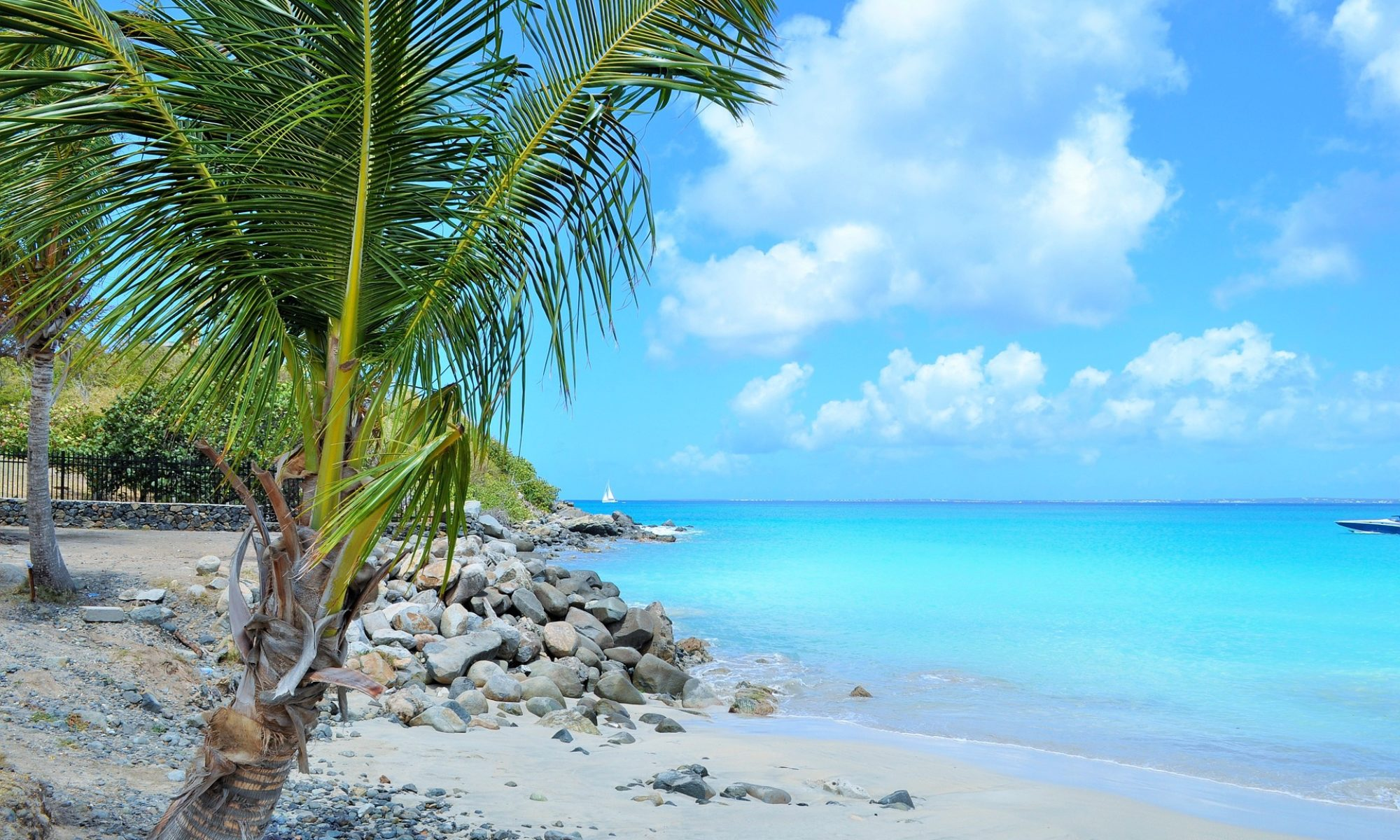 Caribbean Controls